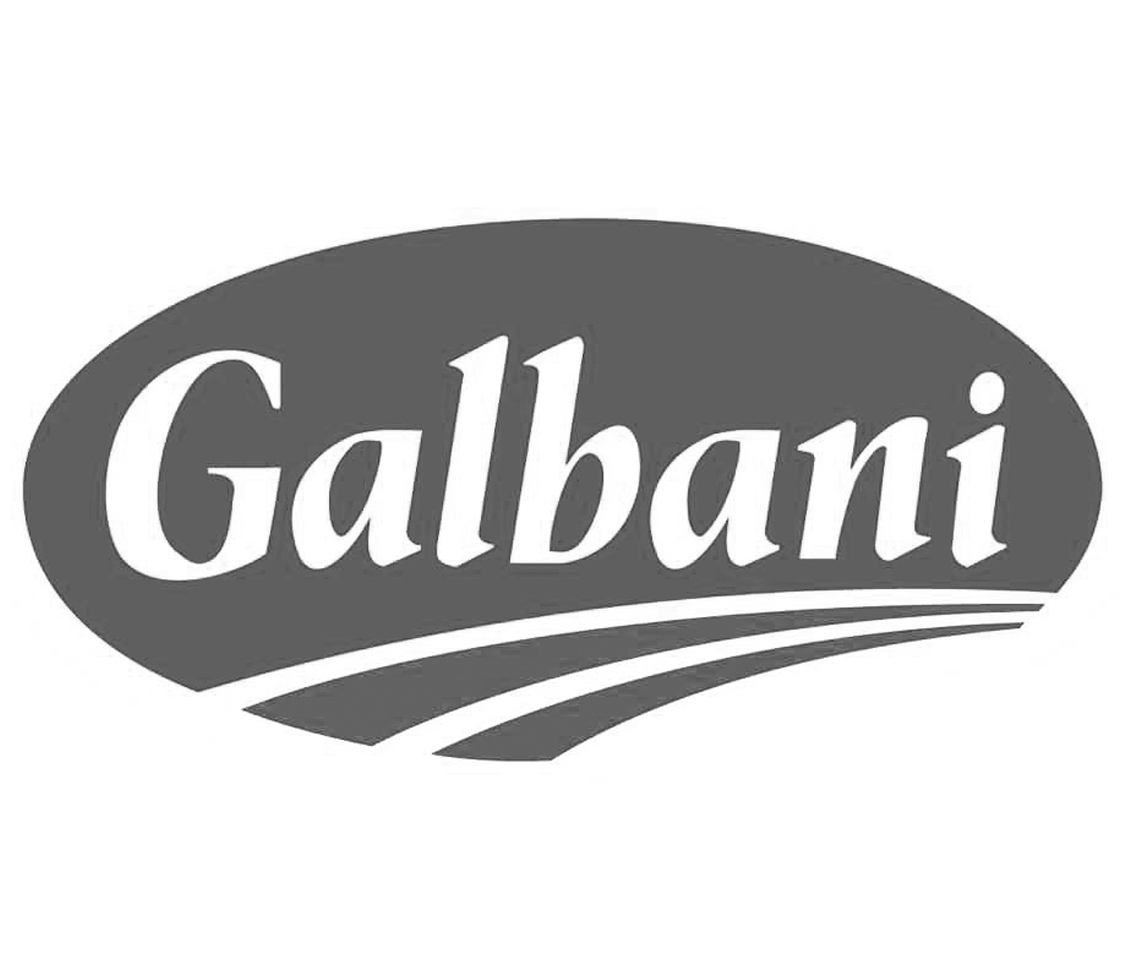 logo-galbani g
