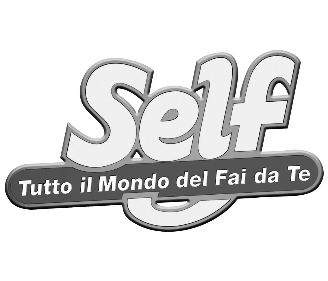logo self g